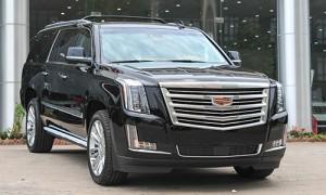 Cadillac-Escalade-Platinum-201-9251-8223-1464018982