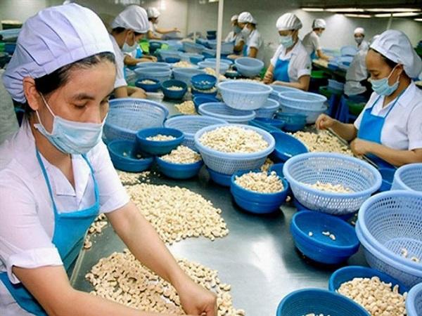 Trung Quốc tăng mua hạt điều vì nhiều dinh dưỡng